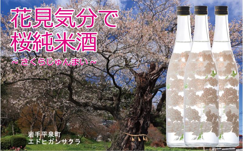 お花見気分で桜純米